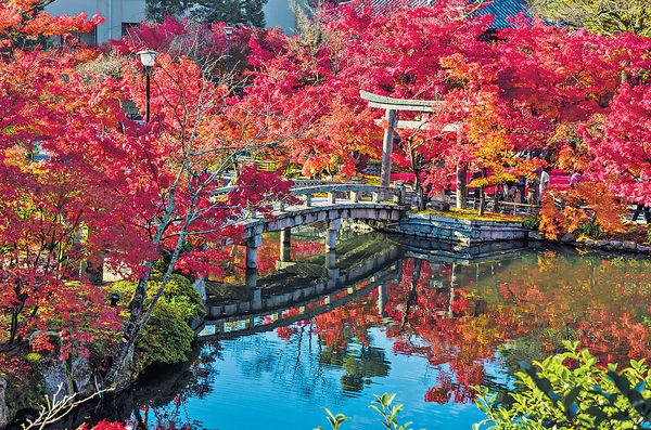 日本20大追楓勝地 近半靚景在京都
