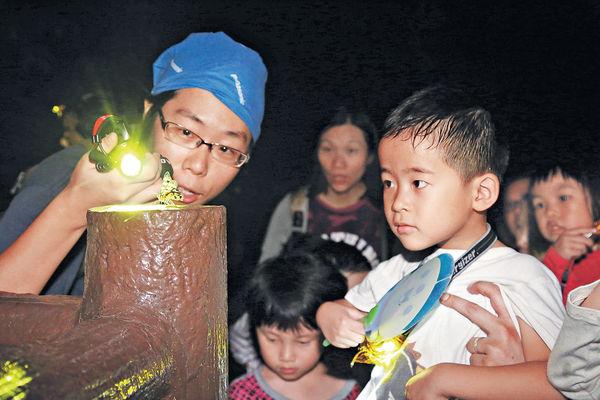 夜訪蛙世界 引發孩子好奇心