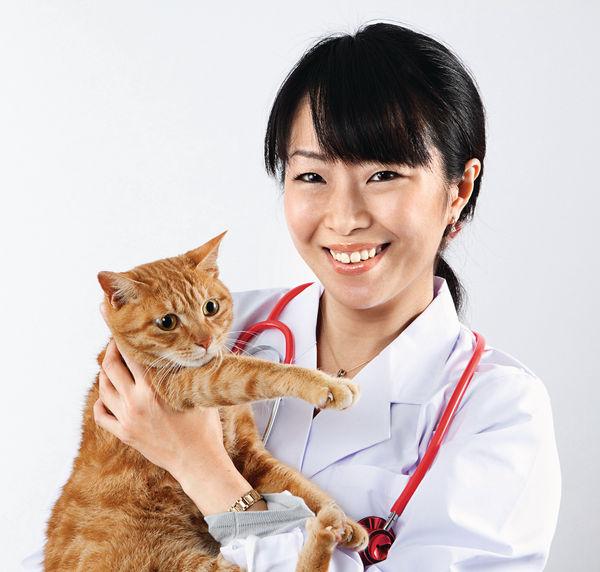 城大獸醫課程 年學費$12萬