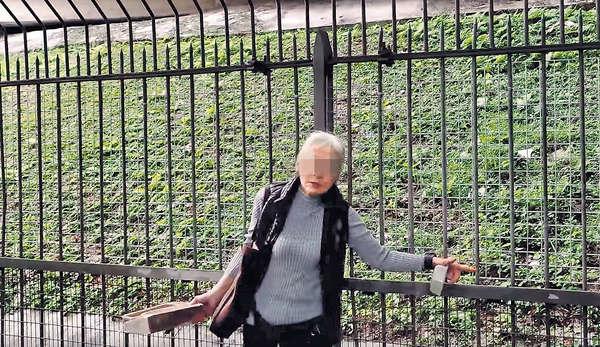 傳太和站設欄困30貓 港鐵:未發現貓隻