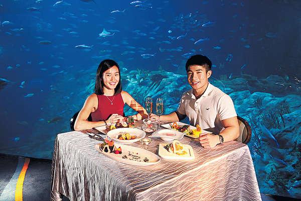 浪漫情人節 相約在海底世界