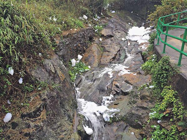 西貢山溪飄「白雪」 疑遭清潔劑污染