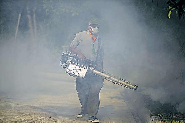 寨卡病毒 成泰國風土病