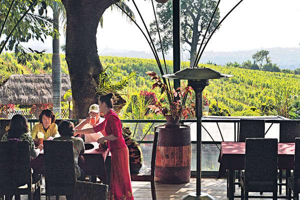緬甸東枝山城 呷第一葡萄酒