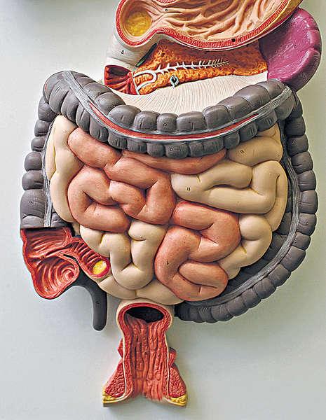 曾患腸病 糖尿風險急升