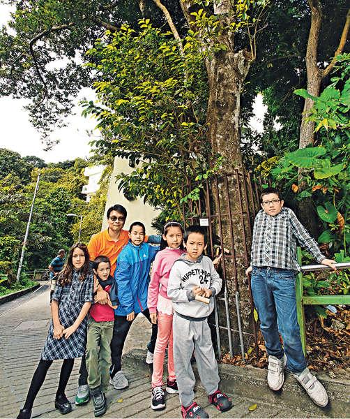 南丫島故事遊 與樹做朋友