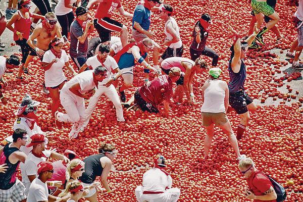 西班牙番茄混戰