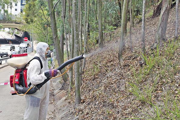 日本腦炎 登革熱夾擊 未來兩月控蚊關鍵