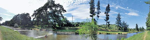 河邊青草地
