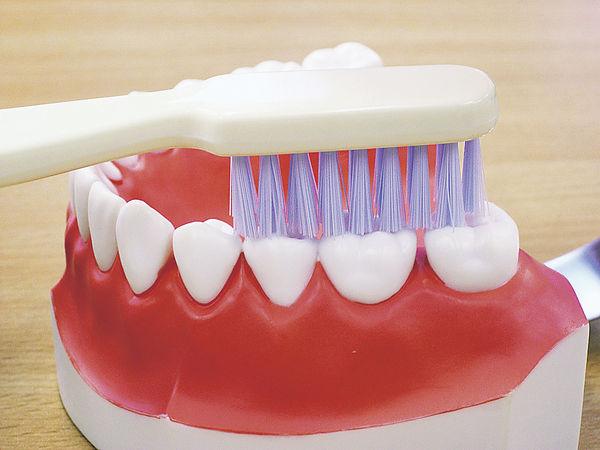 美研究:刷牙助防腸癌