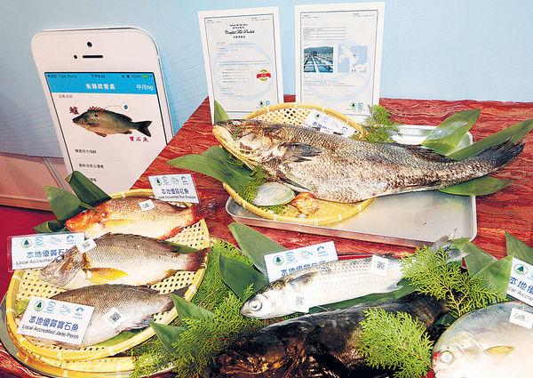「本地優鮮」App 一查即知魚產地