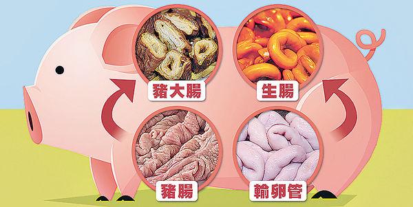 生腸不是豬腸 豬粉腸又是甚麼?