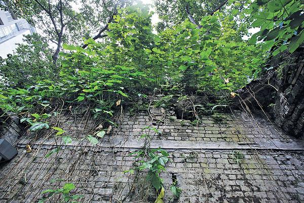 閣麟街民房遺迹保育掀爭議