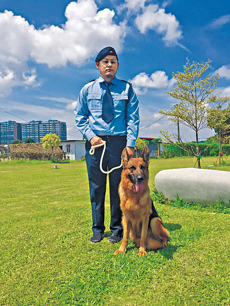 山賊頻出沒 訓練狗隻陪行山需求增4成