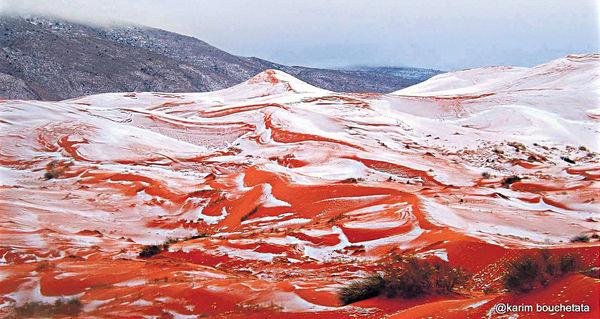 氣候突變 撒哈拉沙漠落雪!?