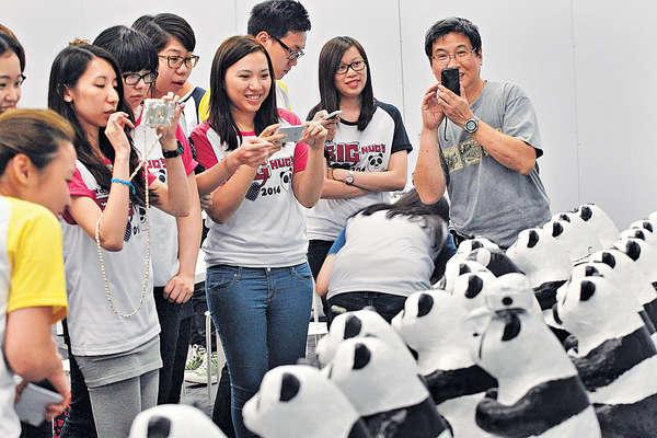 廣告公司帶50員工造紙熊貓