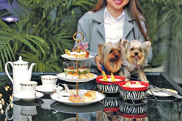 寵愛 酒店新推帶住狗狗去歎Tea