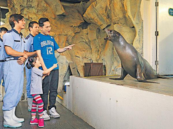 海洋公園動物月 $298約會海獅