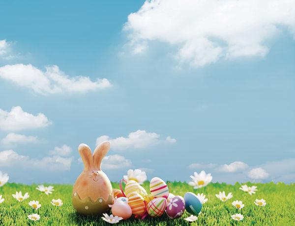 復活節蛋事 全部都係蛋