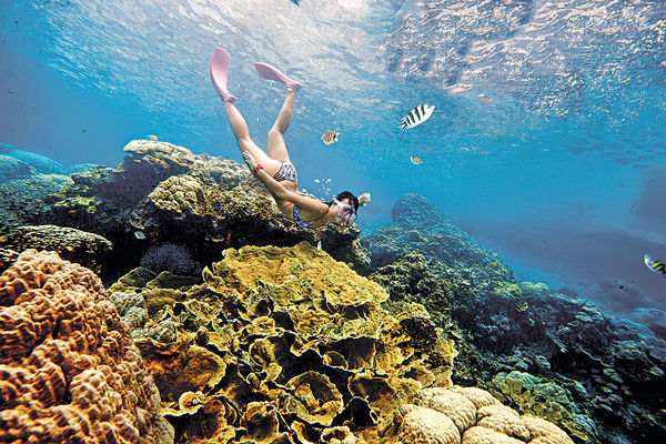 帛琉玻璃海 落入上帝水族箱