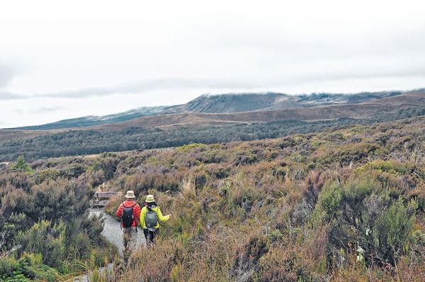 新西蘭觀火山 步走國家公園