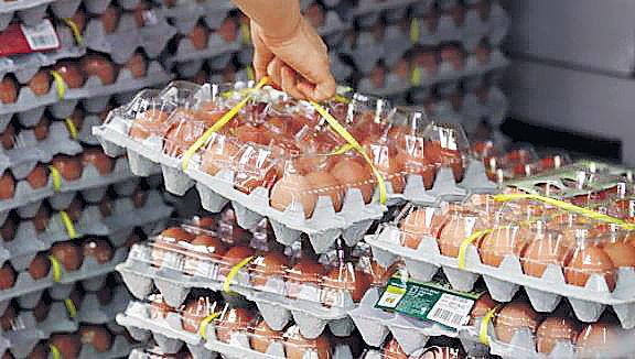 韓銷毀全部毒雞蛋