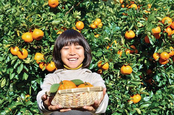 美食文化薈萃.四國