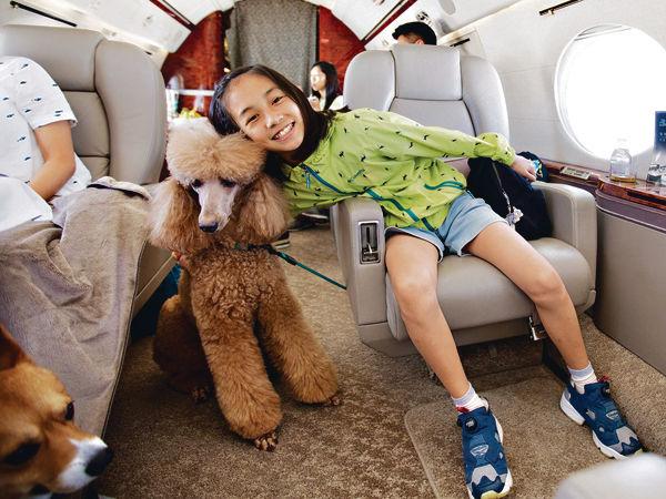 旅行社推包機服務 主人寵物齊旅遊
