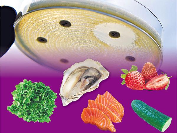 7%沙律生果刺身生蠔 有抗藥惡菌