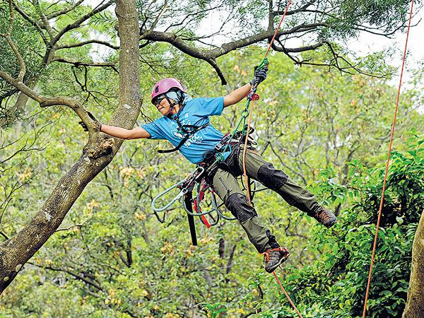 女文員變身攀樹師 出戰國際賽