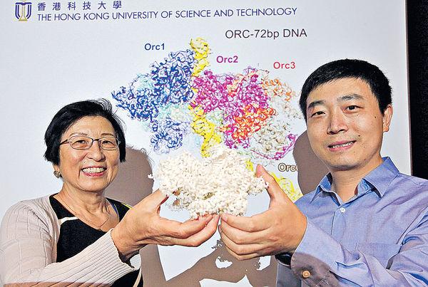 科大測定高解像度DNA 助抗癌