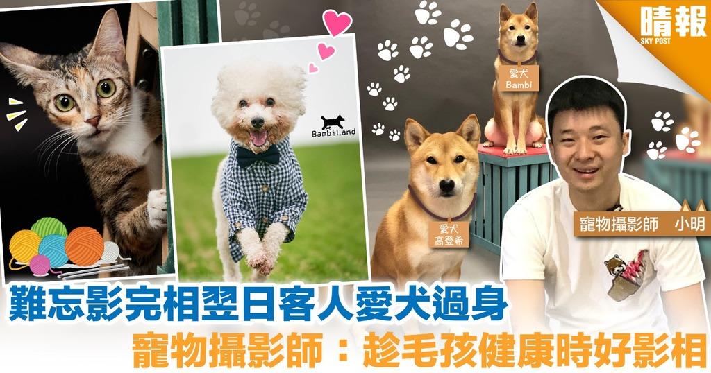 男客不愛拍照 為愛犬影全家福 寵物攝影師:狗仔變咗家人溝通橋樑