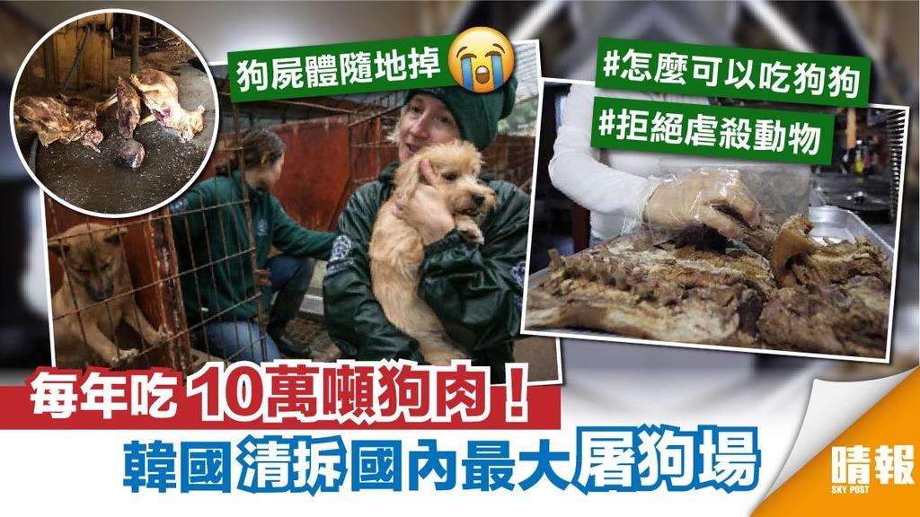 反吃狗肉傳統 韓國終拆國內最大屠狗場