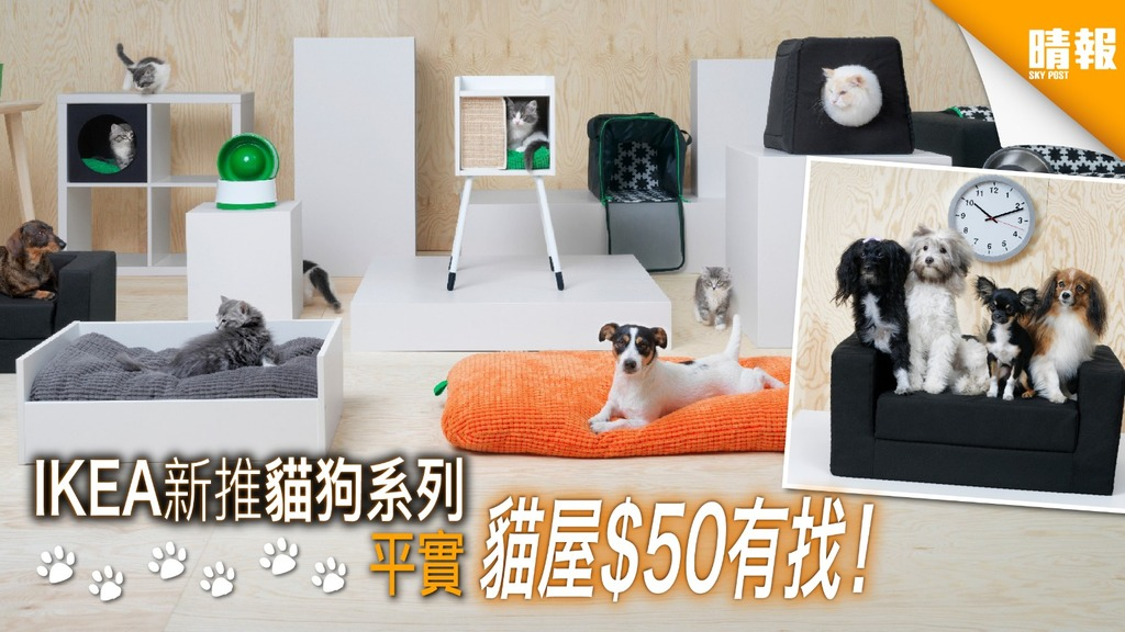 狗主貓奴注意!IKEA 新推貓狗系列 平買毛孩用品