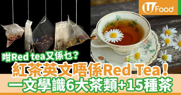 【茶種類英文】餐廳叫茶英文點講?15款茶類實用英語教學