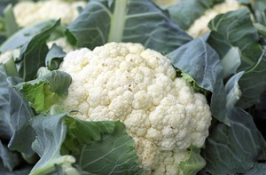 【椰菜花飯】高纖低卡椰菜花代白飯 減肥治便秘