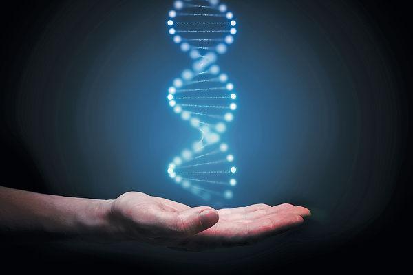 DNA或可預視壽命