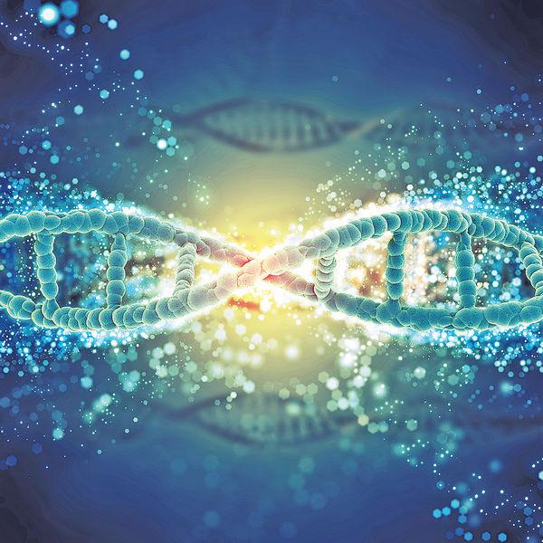 借鑑青蛙卵DNA修復模式 盼創治癌新法