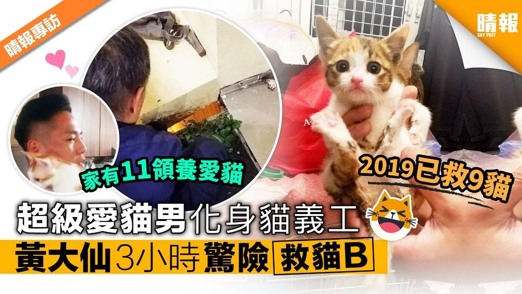 超級愛貓男化身貓義工 黃大仙驚險3小時勇救貓B