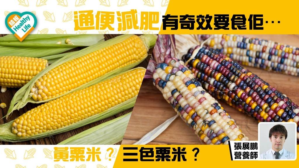 【通便減肥】黃粟米定三色粟米先有效?