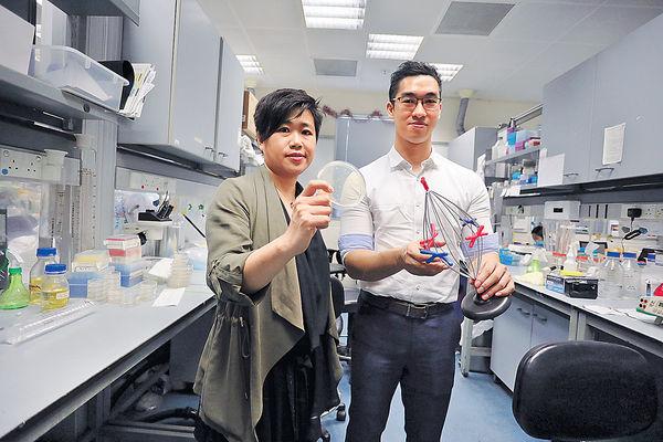 港大揭細胞分裂機制 盼助篩查癌症