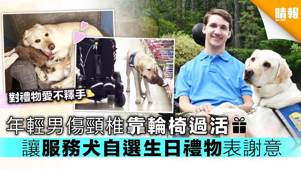 年輕男傷頸椎靠輪椅過活 讓服務犬自選生日禮物表謝意