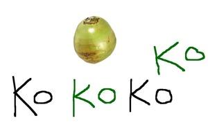 【食物歌】網絡熱爆超洗腦椰子歌 介紹椰子樹不同部位用途
