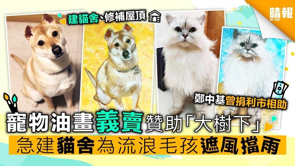寵物油畫義賣贊助「大樹下」 建貓舍、修補屋頂 為流浪毛孩遮風擋雨