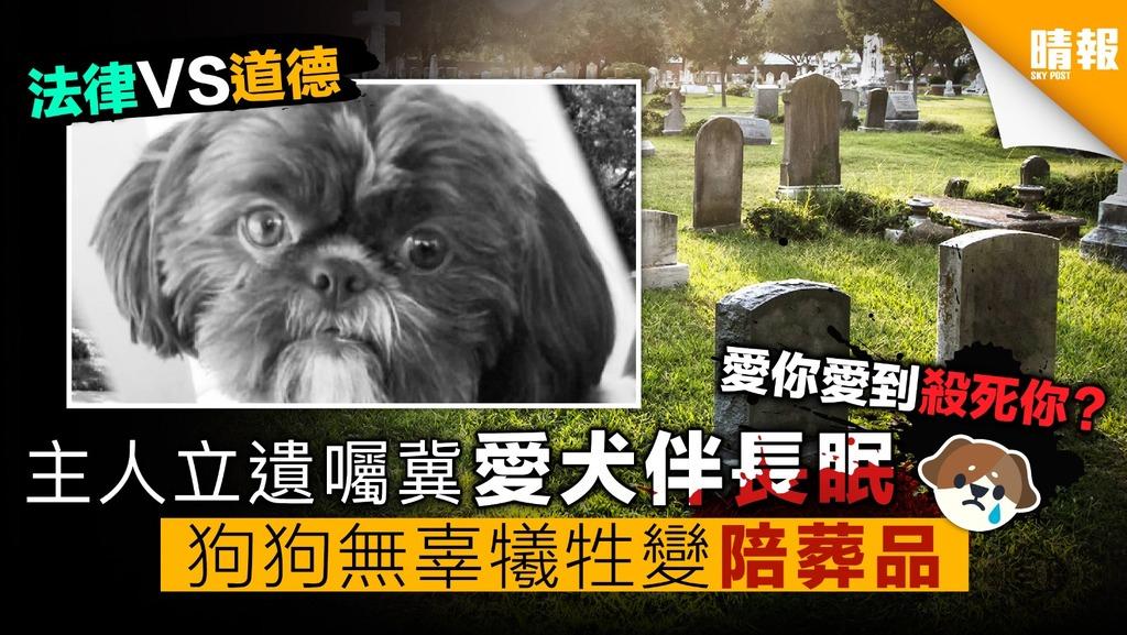 主人立遺囑冀愛犬伴長眠 狗狗無辜犧牲變陪葬品
