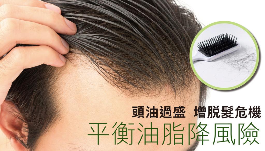 「頭油過盛增脫髮危機 平衡油脂降風險」