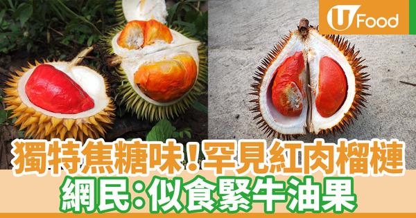 【紅肉榴槤】散發淡淡焦糖香!僅4個地方出產 罕有品種紅肉榴槤