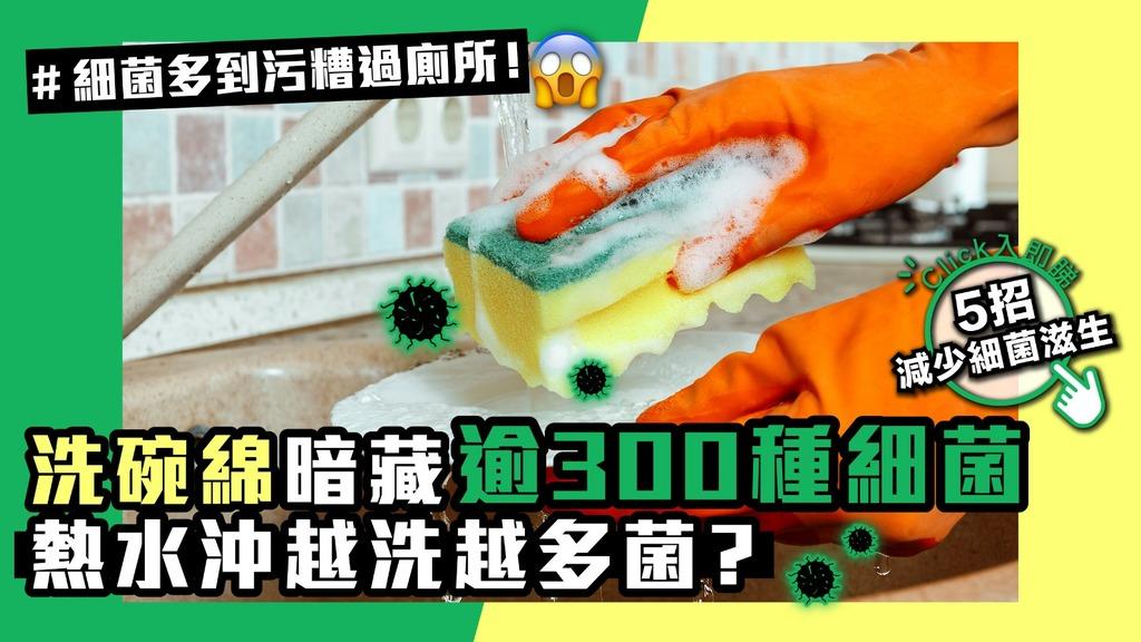 洗碗綿暗藏逾300種細菌 用熱水越洗越多菌?【5招減少細菌滋生】