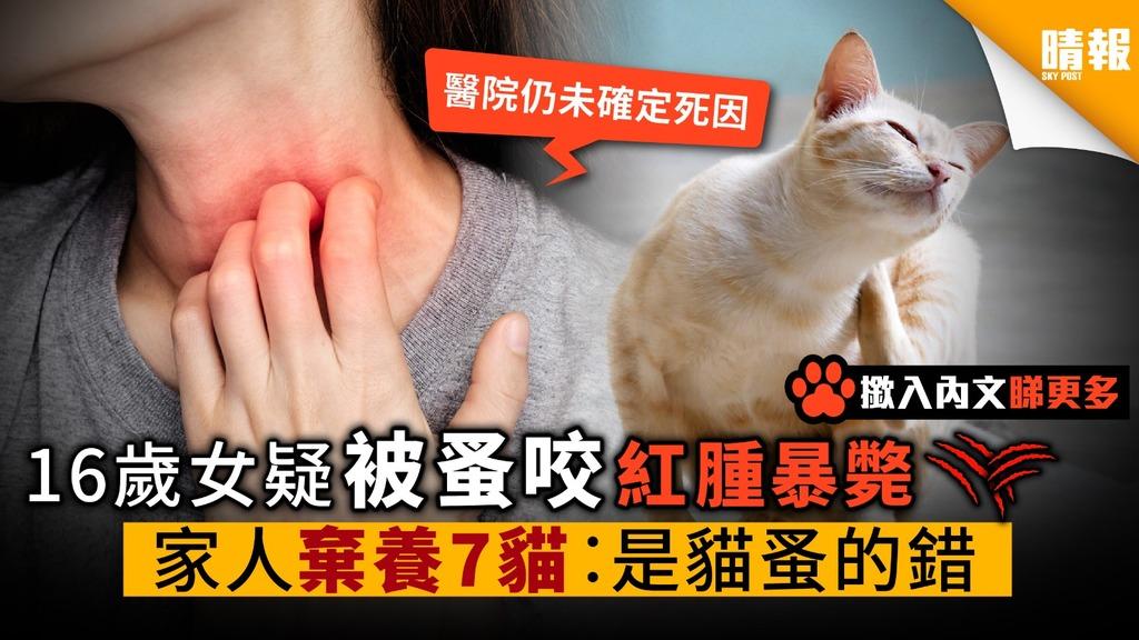 16歲少女疑蚤咬紅腫暴斃 家人棄養7貓咪︰是貓蚤的錯