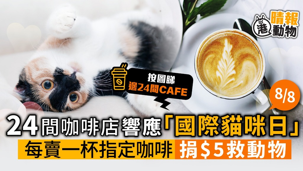 24間咖啡店 響應「國際貓咪日」每賣一杯指定咖啡 捐$5救毛孩